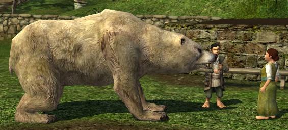 le maitre du savoir Polar_bear