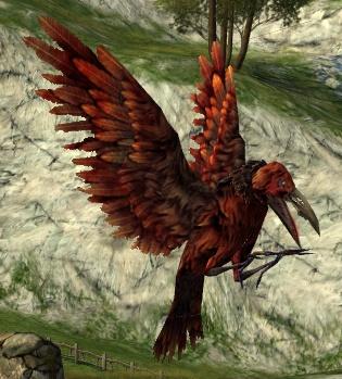 le maitre du savoir Blood_raven