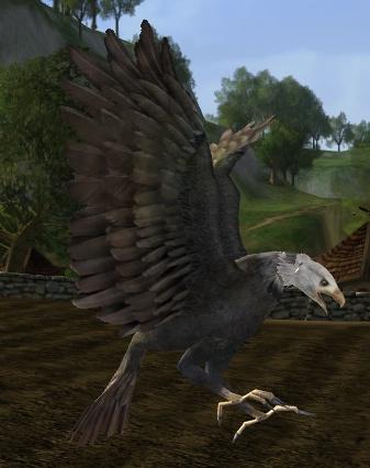 le maitre du savoir Snowcrest_eagle