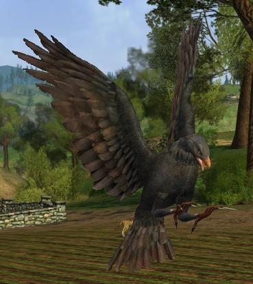 le maitre du savoir Ashen_eagle