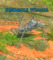 Bindbole Weaver