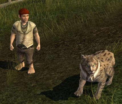 le maitre du savoir Lynx