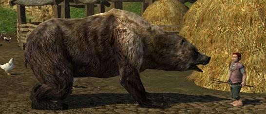 le maitre du savoir Wildpaw_bear